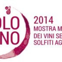 Solovino 2014 – L'expo dei vini senza solfiti aggiunti
