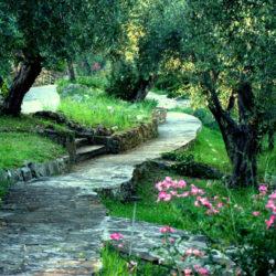Il giardino dell'iris di Firenze: ingresso gratuito
